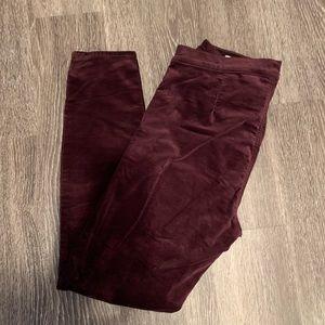 Pants - Gap